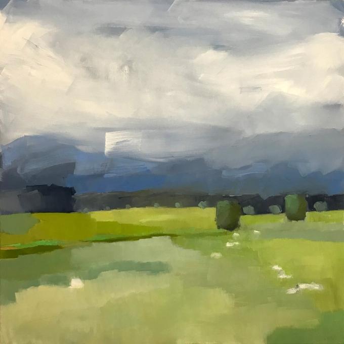 Charbrook Pasture_storm coming_2018
